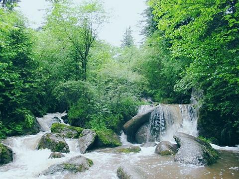 森林公园位于东莞市西南部,这里绿林环绕,湖光山色相辉映,主峰茶山顶图片