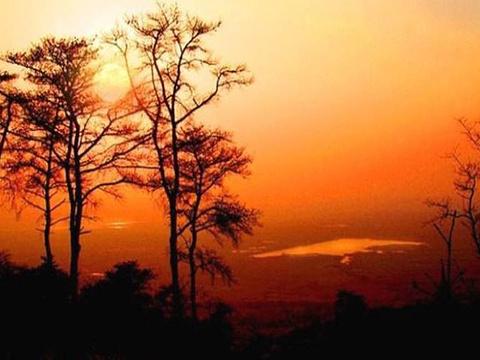 大吴山森林公园