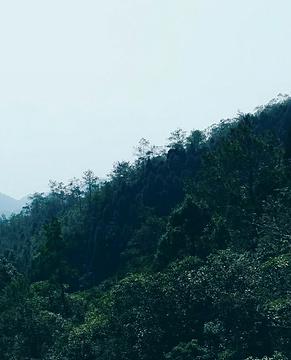 锦州北镇大朝阳闾山国家森林公园