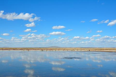 达里诺尔湖的图片