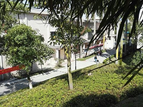 东海洋大学海滨校区_广东海洋大学海滨校区学生第六食堂