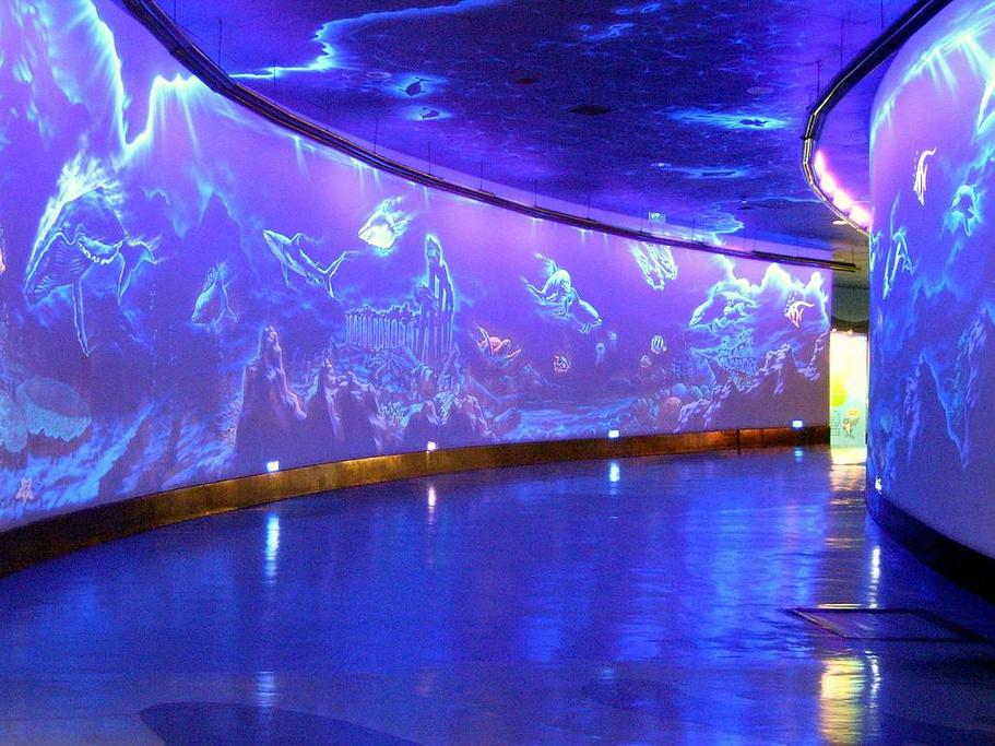 国家动物园和水族馆