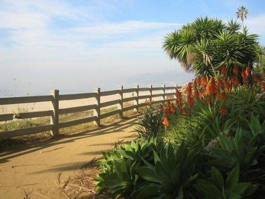 在草地上,放松或只是著名的圣塔莫尼卡楼梯上上下