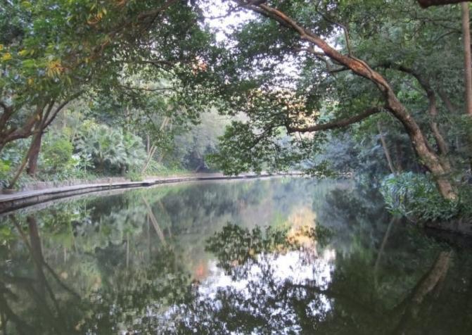 小贴士: 广州比较潮湿,越秀公园树木葱郁,所以蚊子会很多,夏季去玩之