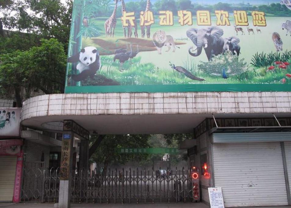 2015长沙动物园_旅游攻略_门票_地址_游记点评,长沙