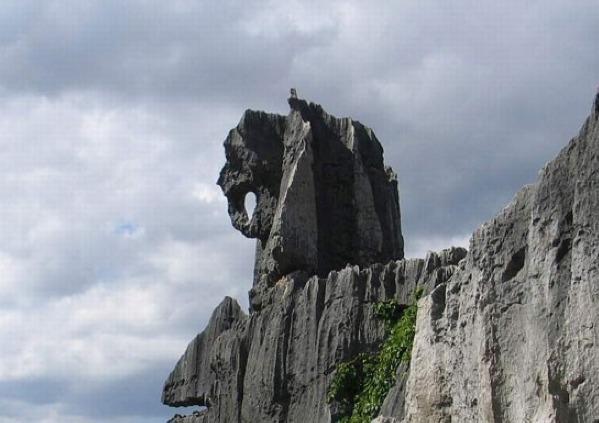 公园距秦皇岛市区12公里,以柳江盆地为中心,由地质遗迹景观区,地质