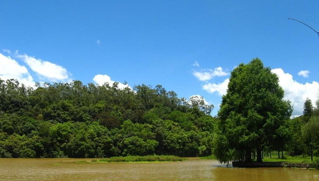 西郊森林公园