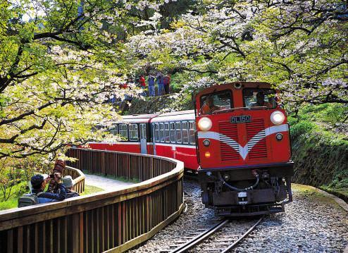 阿里山森林小火车旅游攻略
