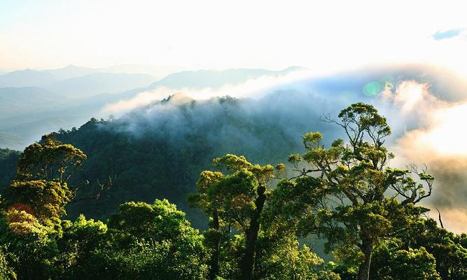 吊罗山国家森林公园旅游图片