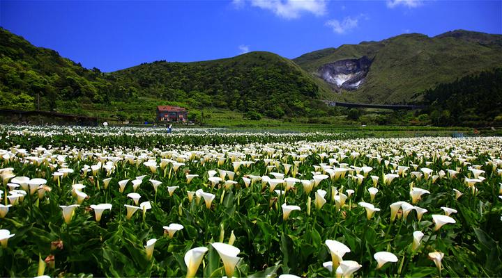 阳明山国家公园旅游图片