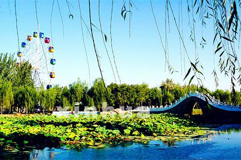 公园风景宝塔景观