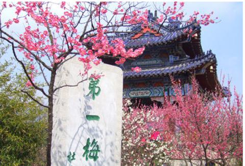 2014梅花山_旅游攻略_门票_地址_游记点评龙岩旅游