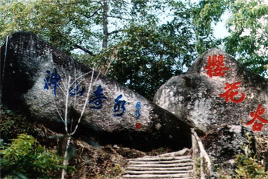 樱花谷森林温泉旅游景点图片