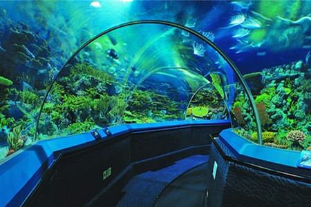壁纸 海底 海底世界 海洋馆 水族馆 450_300