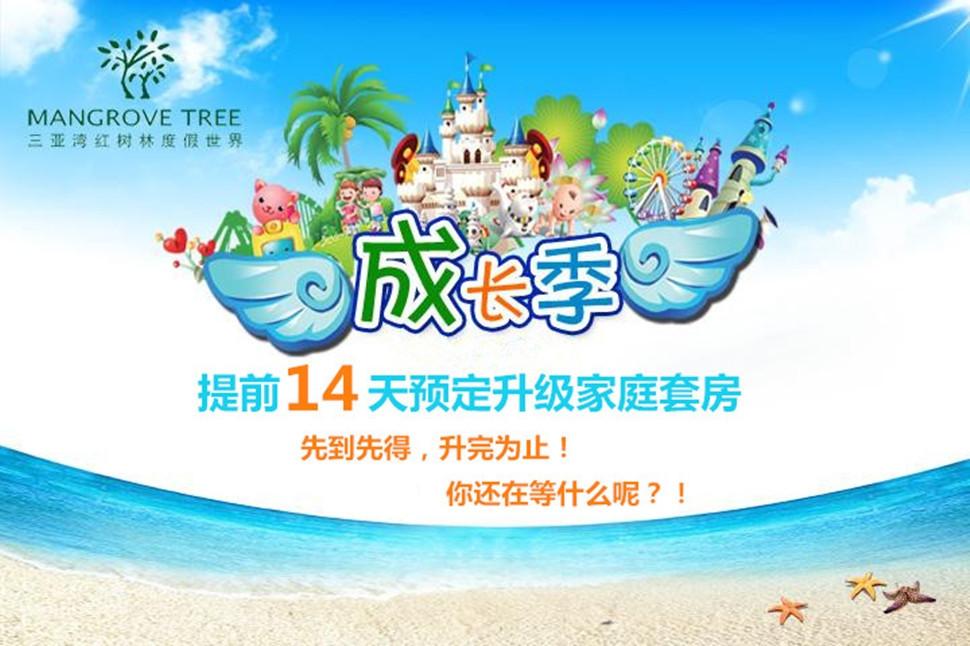 深圳红树林怎么走