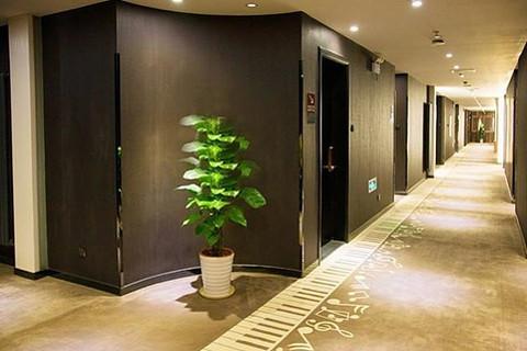 【良乡】北京橄榄树四季酒店