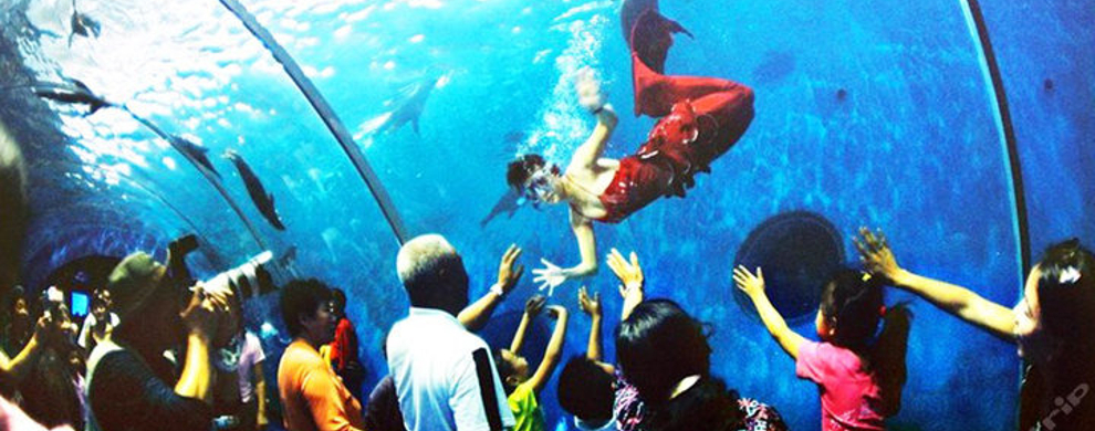 青岛海底世界电子票