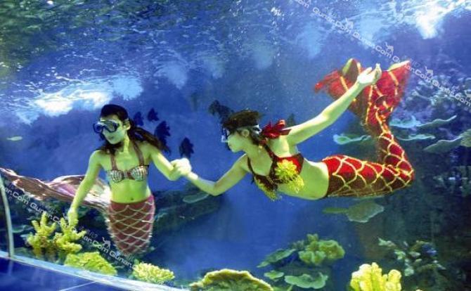 """""""筝舞飞扬 拥抱海洋""""diy风筝节;""""领回你的海洋小动物""""亲子活动;""""奇幻"""
