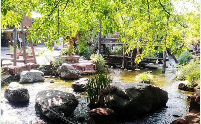 乐山和雅安碧峰峡野生动物园