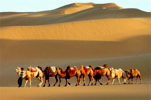 新疆库木塔格沙漠风景名胜区是世界上少有的与城市零