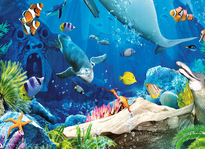 海底世界幼儿画鲨鱼简笔画_画画大全