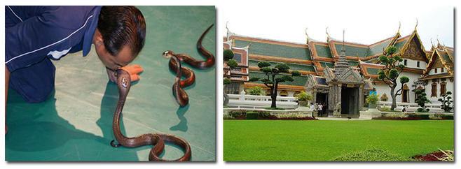 饮 食: 主要以中泰式围餐及自助餐为主,如有忌者请自备零食.图片