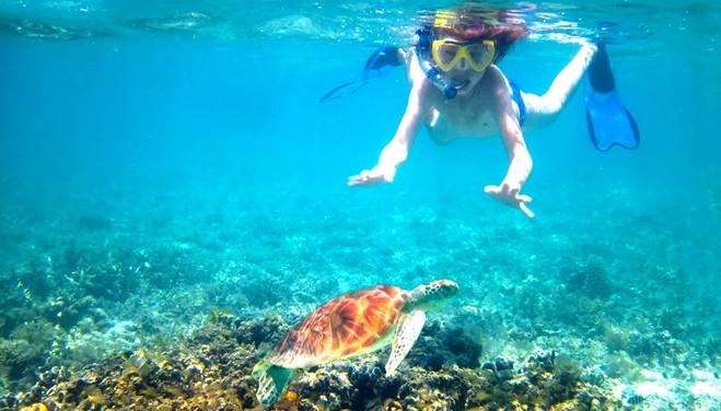 皇帝岛,在沙滩附近享受快乐的潜水时光,欣赏五颜六色的珊瑚礁和热带鱼