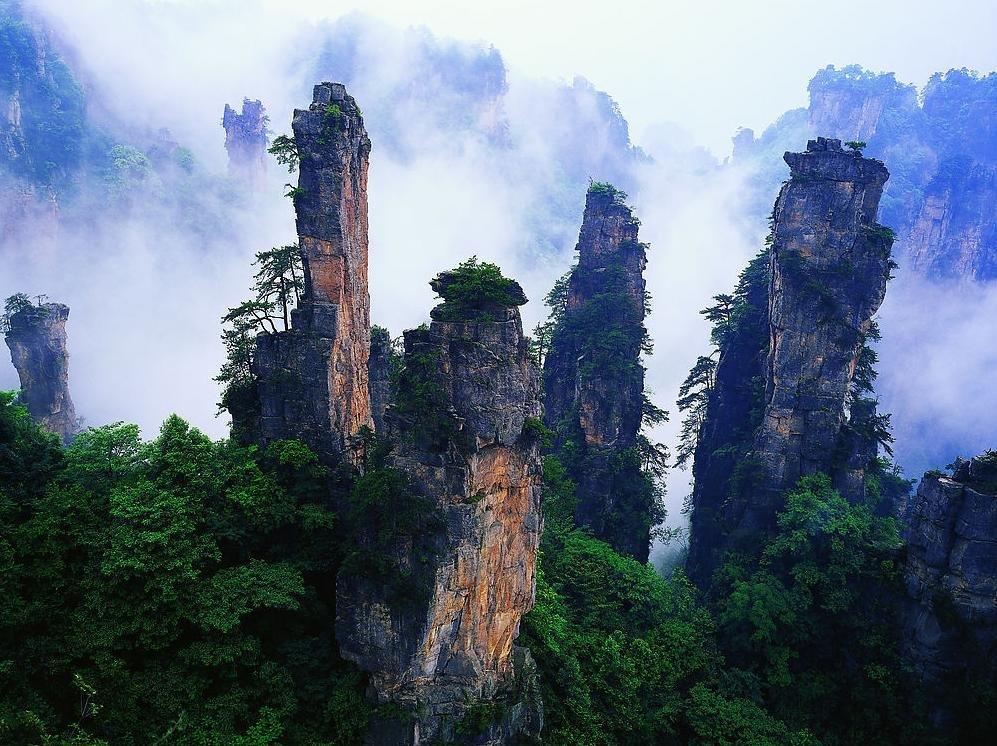 张家界国家森林公园(武陵源景区)