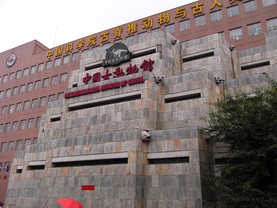 中国古生物馆_北京中国古动物馆