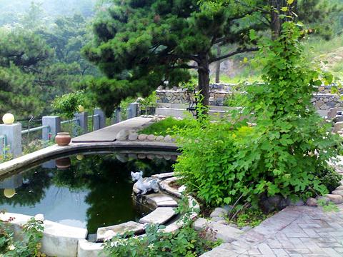 北京/鹫峰森林公园