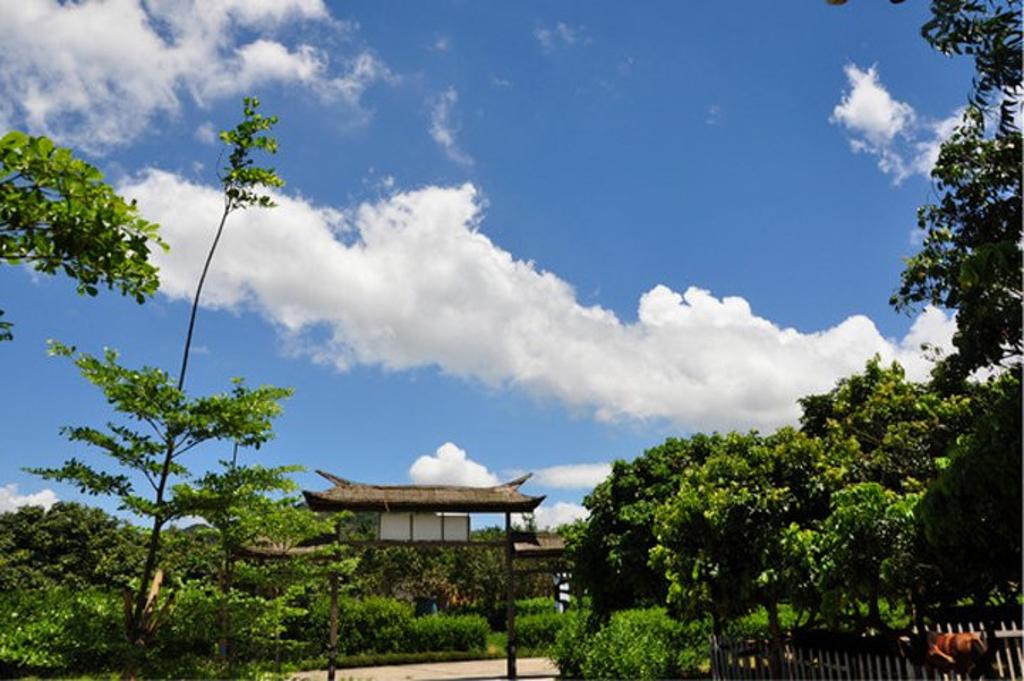 九龙山风景区旅游景点图片