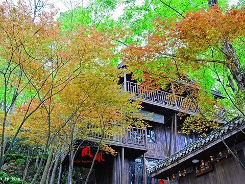 南华山国家森林公园旅游景点图片