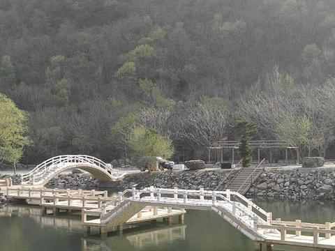 龙道沟旅游景点图片