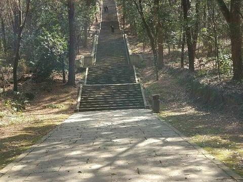 马鞍山森林公园旅游景点图片