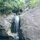 三寨谷森林公园
