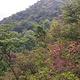 英山县天马寨风景区