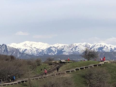 中华福寿山景区旅游景点图片