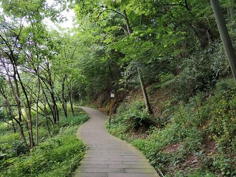 鸿恩寺森林公园旅游景点图片