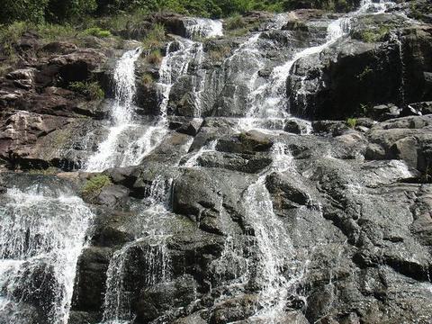 幽谷逸林旅游景点图片
