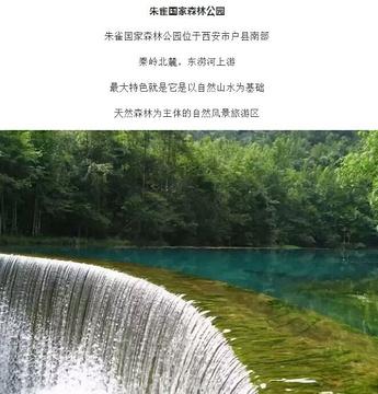 朱雀国家森林公园旅游景点攻略图