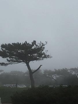 阳明山国家公园旅游景点攻略图
