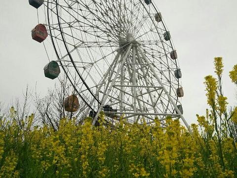 重庆龙温泉旅游景点图片