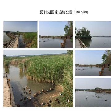 野鸭湖国家湿地公园旅游景点攻略图