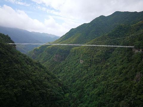 灵江源森林公园旅游景点攻略图