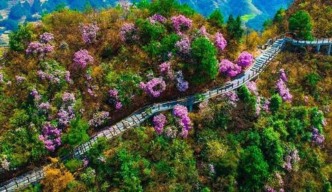 穿岩山国家森林公园旅游景点攻略图