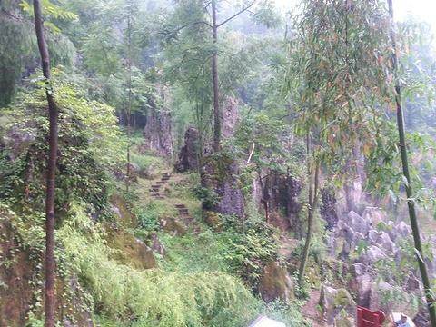思南石林旅游区旅游景点图片