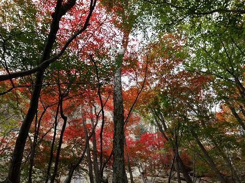 天罡山旅游景点图片