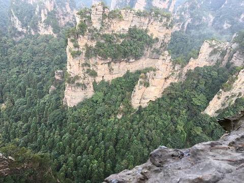 张家界世界地质公园博物馆旅游景点图片