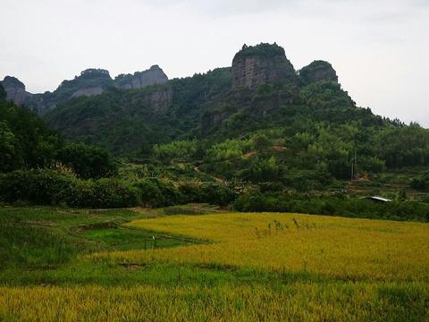 竹安寨的图片