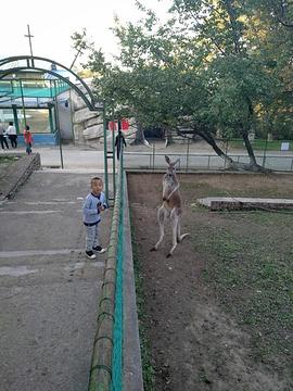 本溪动物园的图片